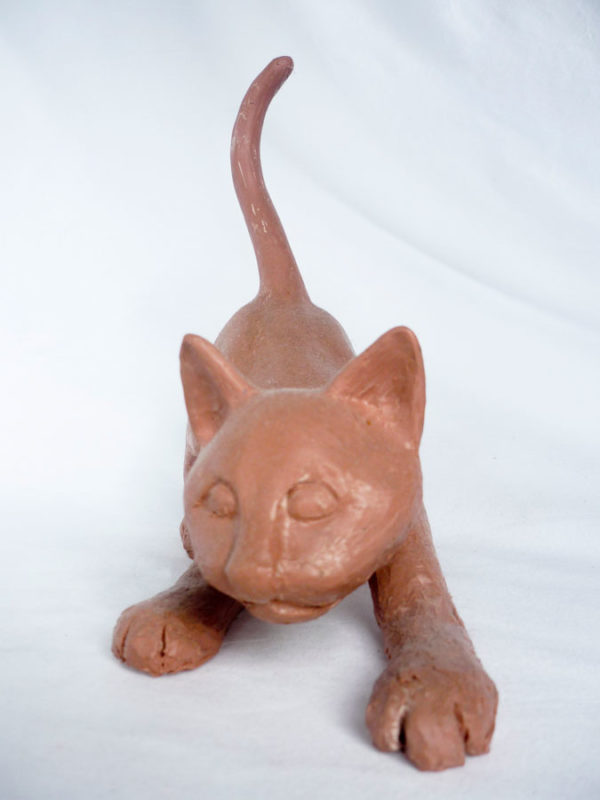 Kitten 900