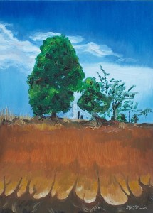 A33-Tyalgum-Tree-900