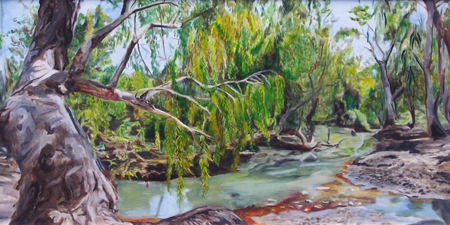 Oil paintings for sale Brisbane from Mitchell Warner fine artist.