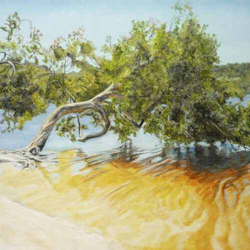 Large square oil painting of Brown Lake North Stradbroke Island.