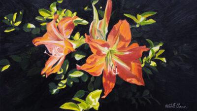 A69 Spring-Lillies-900