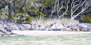 Bonville Creek, Sawtell