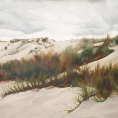 A52-Shifting-Sands,-Waihi-Beach-900 lightened